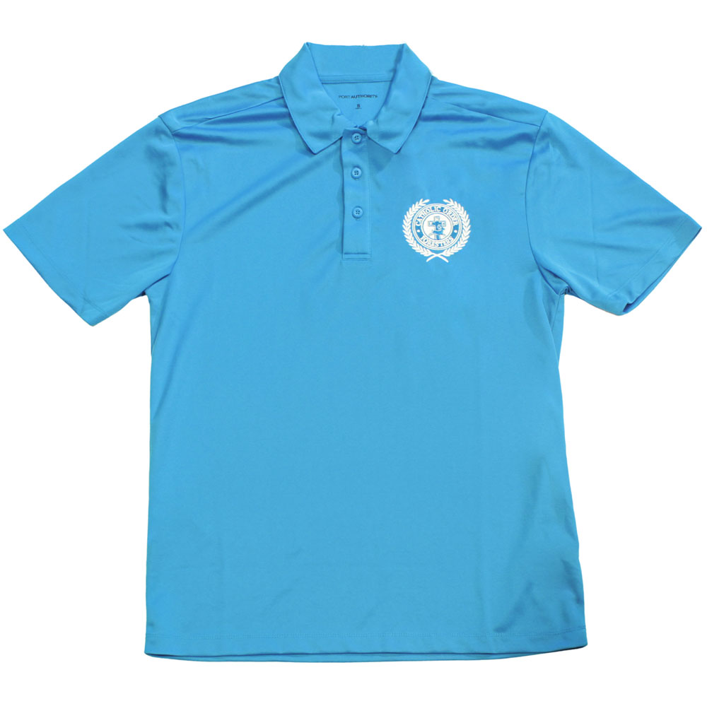 Men's electric blue polo shirt
